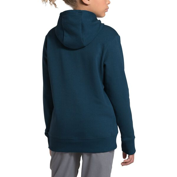Youth Logowear Pullover Hoodie, BLUE WING TEAL, hi-res