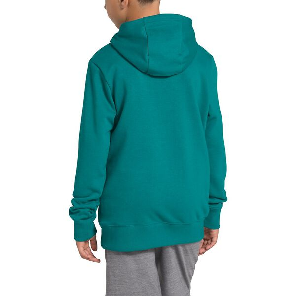 Youth Logowear Pullover Hoodie, FANFARE GREEN, hi-res