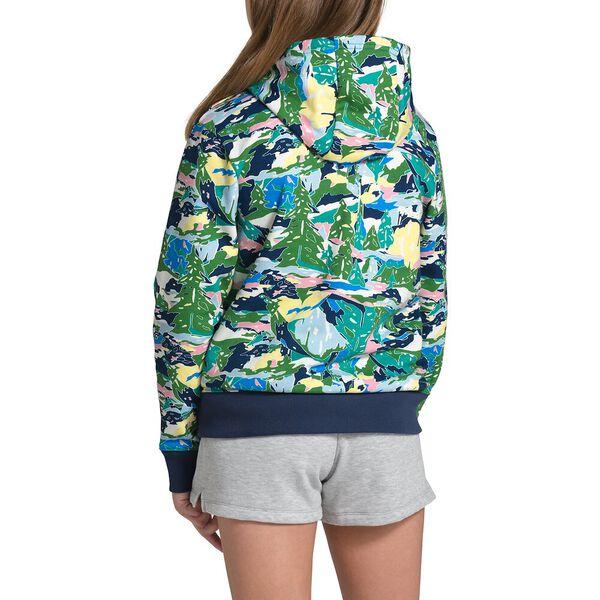 Youth Logowear Pullover Hoodie, JAIDEN GREEN VALLEY BLOCK PRINT, hi-res