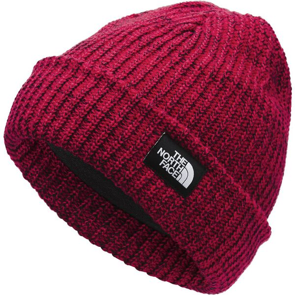 Youth Salty Dog Beanie, TNF RED, hi-res