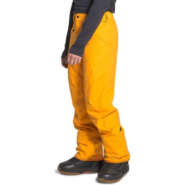 Men's Freedom Pants, SUMMIT GOLD, hi-res